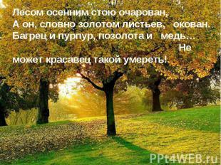 Лесом осенним стою очарован,А он, словно золотом листьев, окован.Багрец и пурпур
