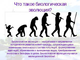 Что такое биологическая эволюция? Биологическая эволюция — необратимое и направл