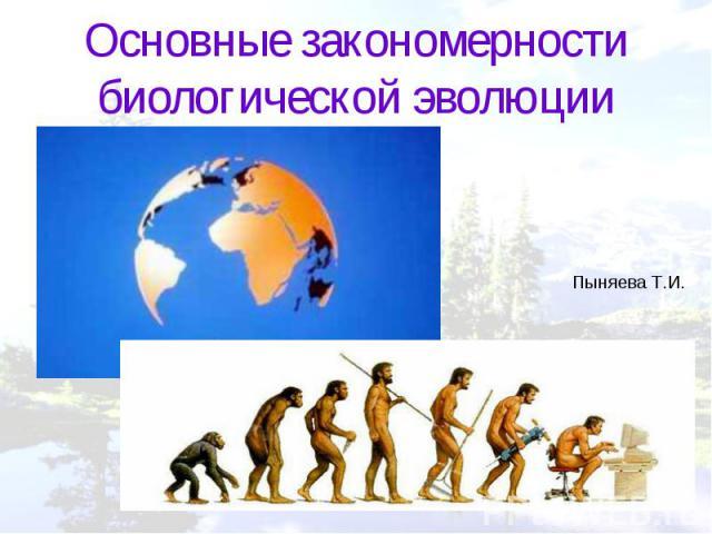 Основные закономерности биологической эволюции