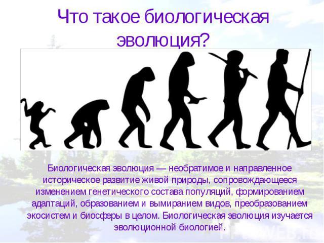 Что такое биологическая эволюция? Биологическая эволюция — необратимое и направленное историческое развитие живой природы, сопровождающееся изменением генетического состава популяций, формированием адаптаций, образованием и вымиранием видов, преобра…
