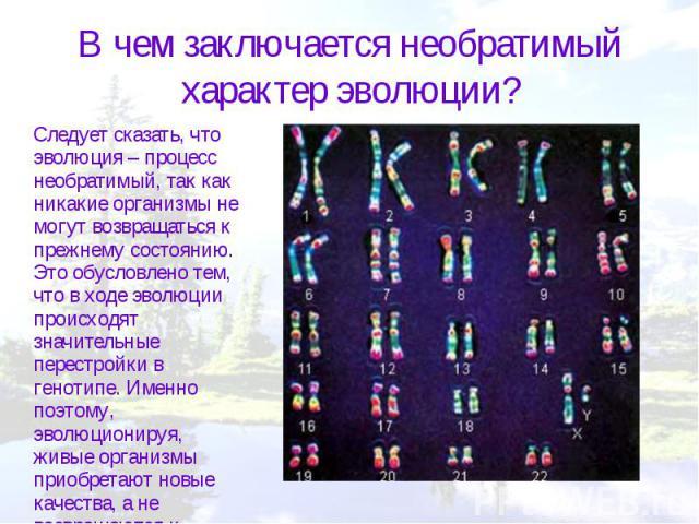 В чем заключается необратимый характер эволюции? Следует сказать, что эволюция – процесс необратимый, так как никакие организмы не могут возвращаться к прежнему состоянию. Это обусловлено тем, что в ходе эволюции происходят значительные перестройки …
