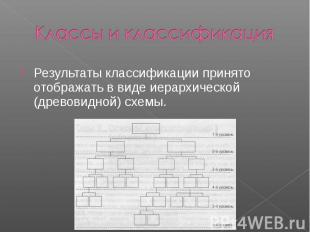 Классы и классификация Результаты классификации принято отображать в виде иерарх