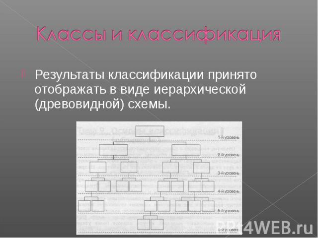 Классы и классификация Результаты классификации принято отображать в виде иерархической (древовидной) схемы.