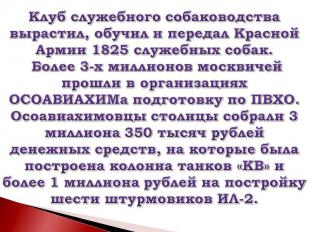 Клуб служебного собаководства вырастил, обучил и передал Красной Армии 1825 служ