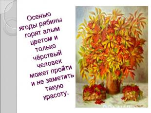 Осенью ягоды рябины горят алым цветом и только чёрствый человек может пройти и н