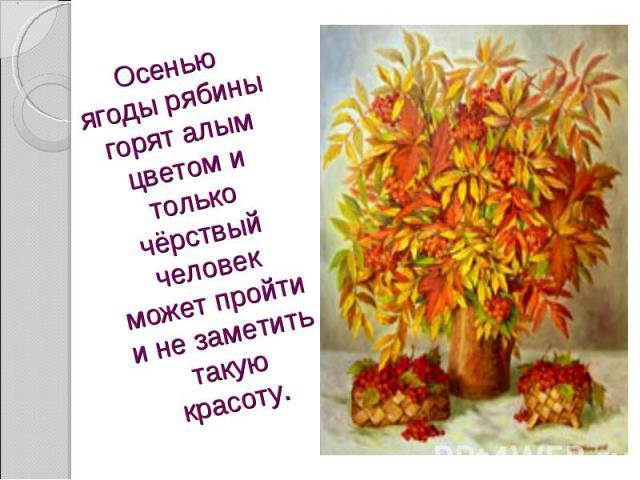 Осенью ягоды рябины горят алым цветом и только чёрствый человек может пройти и не заметить такую красоту.