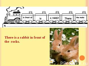 There is a rabbit in front of the rocks.