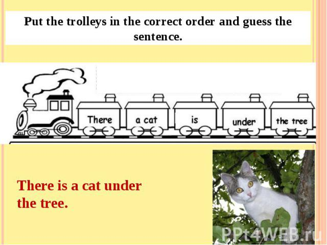 Put the trolleys in the correct order and guess the sentence.There is a cat under the tree.