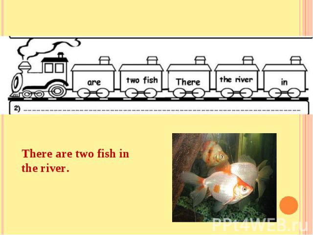 There are two fish in the river.
