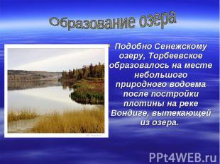 Образование озераПодобно Сенежскому озеру, Торбеевское образовалось на месте неб