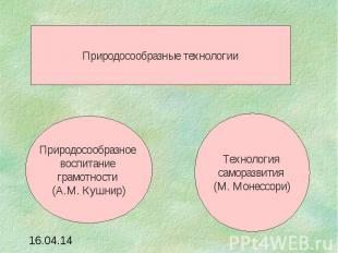 Природосообразные технологииПриродосообразное воспитание грамотности (А.М. Кушни