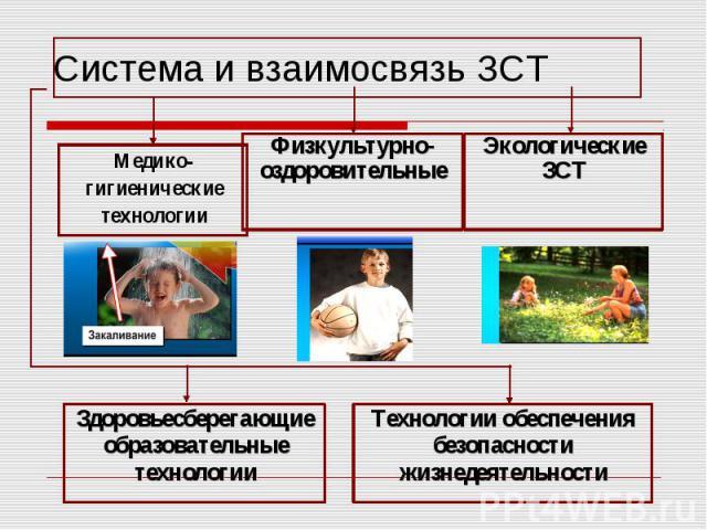 Система и взаимосвязь ЗСТМедико-гигиенические технологииФизкультурно-оздоровительныеЭкологические ЗСТЗдоровьесберегающие образовательные технологииТехнологии обеспечения безопасности жизнедеятельности