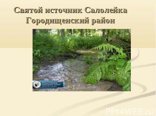 Святой источник Салолейка Городищенский район