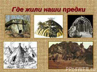 Где жили наши предки