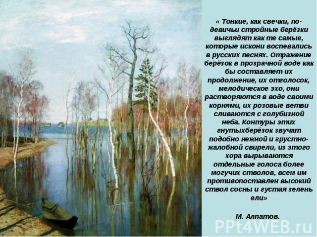 « Тонкие, как свечки, по-девичьи стройные берёзки выглядят как те самые, которые искони воспевались в русских песнях. Отражение берёзок в прозрачной воде как бы составляет их продолжение, их отголосок, мелодическое эхо, они растворяются в воде своим…