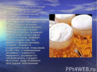 Обладая мощным мочегонным эффектом, пиво беспощадно вымывает из организма «строй
