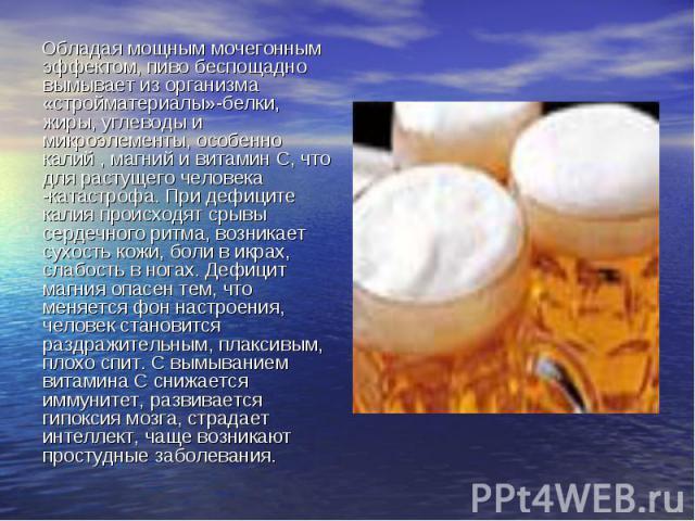 Обладая мощным мочегонным эффектом, пиво беспощадно вымывает из организма «стройматериалы»-белки, жиры, углеводы и микроэлементы, особенно калий , магний и витамин С, что для растущего человека -катастрофа. При дефиците калия происходят срывы сердеч…