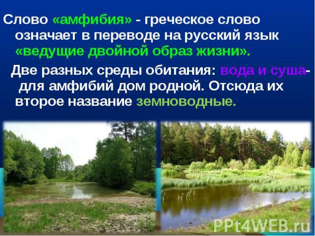 Слово «амфибия» - греческое слово означает в переводе на русский язык «ведущие двойной образ жизни». Две разных среды обитания: вода и суша- для амфибий дом родной. Отсюда их второе название земноводные.