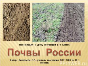 Презентация к уроку географии в 8 классе. Почвы России Автор: Зиновьева Е.Л., уч