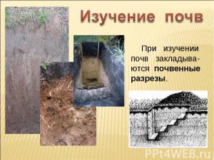 Изучение почв При изучении почв закладыва-ются почвенные разрезы.
