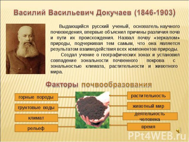 Василий Васильевич Докучаев (1846-1903) Выдающийся русский ученый, основатель научного почвоведения, впервые объяснил причины различия почв и пути их происхождения. Назвал почву «зеркалом» природы, подчеркивая тем самым, что она является результатом…