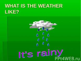 WHAT IS THE WEATHER LIKE? It's rainy