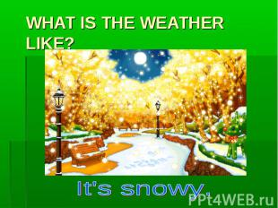 WHAT IS THE WEATHER LIKE? It's snowy.