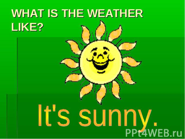 WHAT IS THE WEATHER LIKE ? It's sunny.