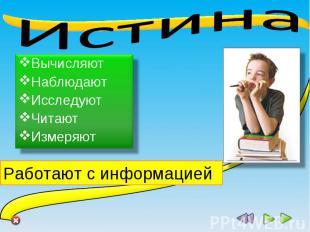 Истина Вычисляют Наблюдают Исследуют Читают Измеряют Работают с информацией