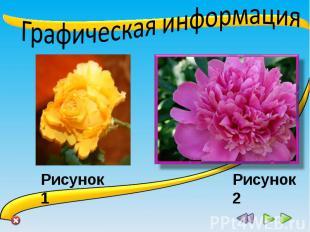 Графическая информация Рисунок 1 Рисунок 2