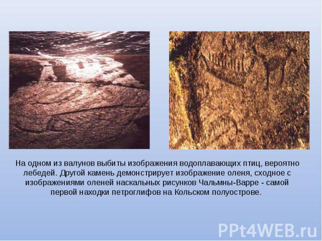 На одном из валунов выбиты изображения водоплавающих птиц, вероятно лебедей. Другой камень демонстрирует изображение оленя, сходное с изображениями оленей наскальных рисунков Чальмны-Варре - самой первой находки петроглифов на Кольском полуострове.