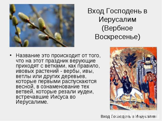 Вход Господень в Иерусалим (Вербное Воскресенье) Название это происходит от того, что на этот праздник верующие приходят с ветками, как правило, ивовых растений - вербы, ивы, ветлы или других деревьев, которые первыми распускаются весной, в ознамено…