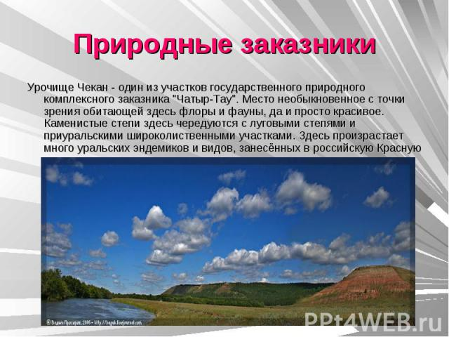 Природные заказники Урочище Чекан - один из участков государственного природного комплексного заказника