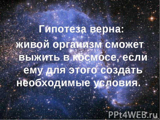 Гипотеза верна: живой организм сможет выжить в космосе, если ему для этого создать необходимые условия.