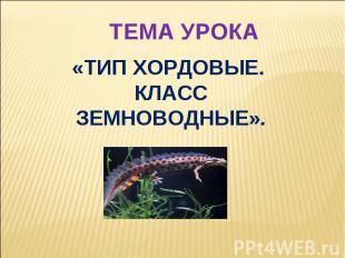 ТЕМА УРОКА «ТИП ХОРДОВЫЕ. КЛАСС ЗЕМНОВОДНЫЕ».