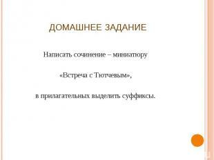 Домашнее задание Написать сочинение – миниатюру«Встреча с Тютчевым»,в прилагател