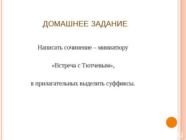 Домашнее задание Написать сочинение – миниатюру«Встреча с Тютчевым»,в прилагательных выделить суффиксы.