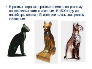 В разных странах в разные времена по-разному относились к этим животным. В 1500