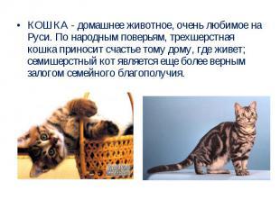 КОШКА - домашнее животное, очень любимое на Руси. По народным поверьям, трехшерс
