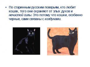 По старинным русским поверьям, кто любит кошек, того они охраняют от злых духов