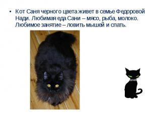 Кот Саня черного цвета живет в семье Федоровой Нади. Любимая еда Сани – мясо, ры