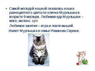 Самой молодой кошкой оказалась кошка разноцветного цвета по кличке Мурлышка в во
