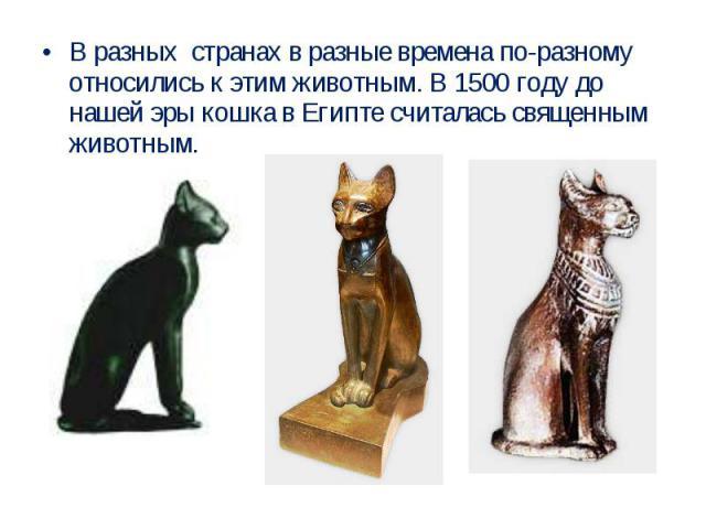 В разных странах в разные времена по-разному относились к этим животным. В 1500 году до нашей эры кошка в Египте считалась священным животным.