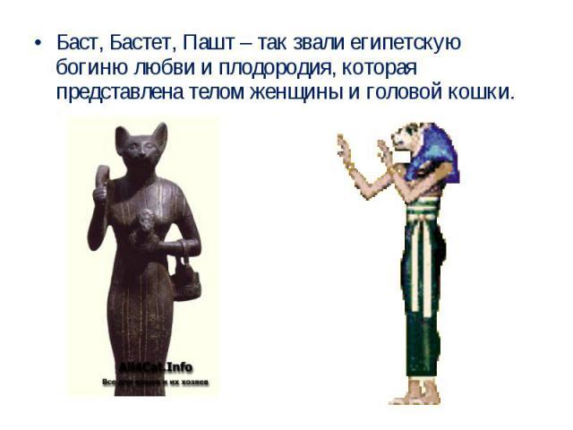 Баст, Бастет, Пашт – так звали египетскую богиню любви и плодородия, которая представлена телом женщины и головой кошки.