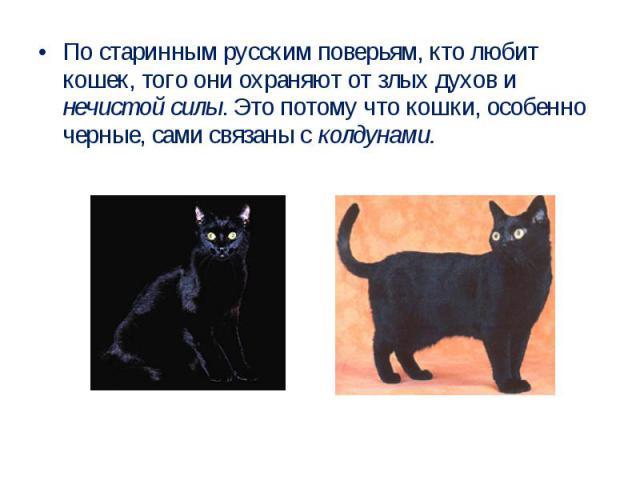 По старинным русским поверьям, кто любит кошек, того они охраняют от злых духов и нечистой силы. Это потому что кошки, особенно черные, сами связаны с колдунами.