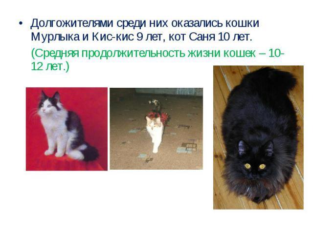Долгожителями среди них оказались кошки Мурлыка и Кис-кис 9 лет, кот Саня 10 лет. (Средняя продолжительность жизни кошек – 10-12 лет.)