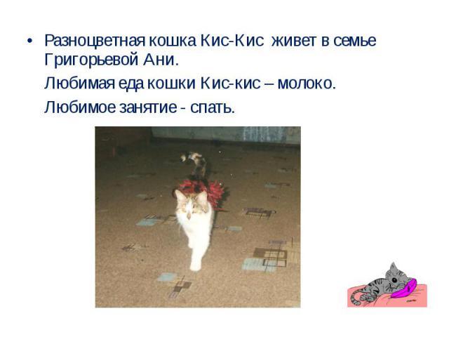 Разноцветная кошка Кис-Кис живет в семье Григорьевой Ани. Любимая еда кошки Кис-кис – молоко. Любимое занятие - спать.