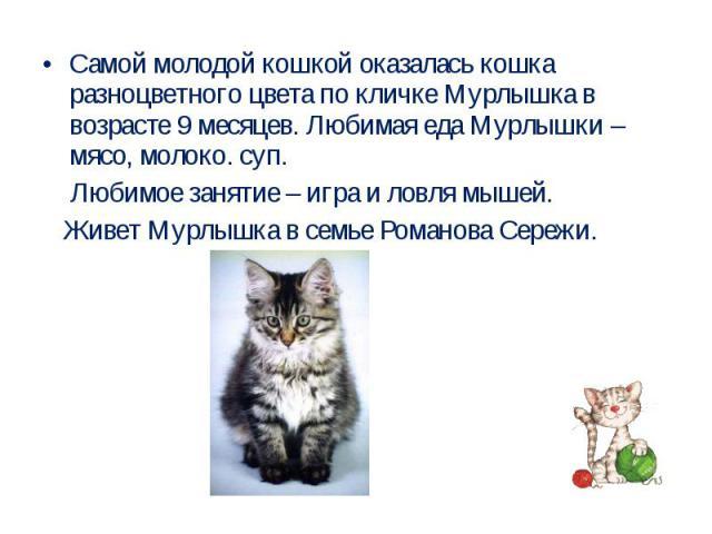 Самой молодой кошкой оказалась кошка разноцветного цвета по кличке Мурлышка в возрасте 9 месяцев. Любимая еда Мурлышки – мясо, молоко. суп. Любимое занятие – игра и ловля мышей. Живет Мурлышка в семье Романова Сережи.