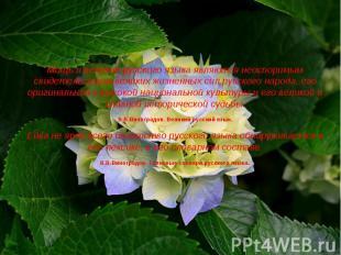 Мощь и величие русского языка являются неоспоримым свидетельством великих жизнен