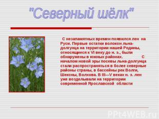 """""""Северный шёлк"""" С незапамятных времен появился лен на Руси. Первые остатки волок"""